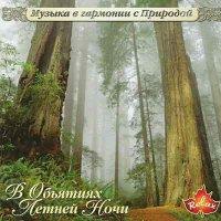 Музыка в гармонии с природой / В обьятиях летней ночи