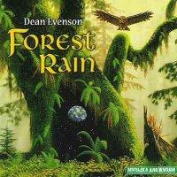 Dean Evenson / Forest Rain
